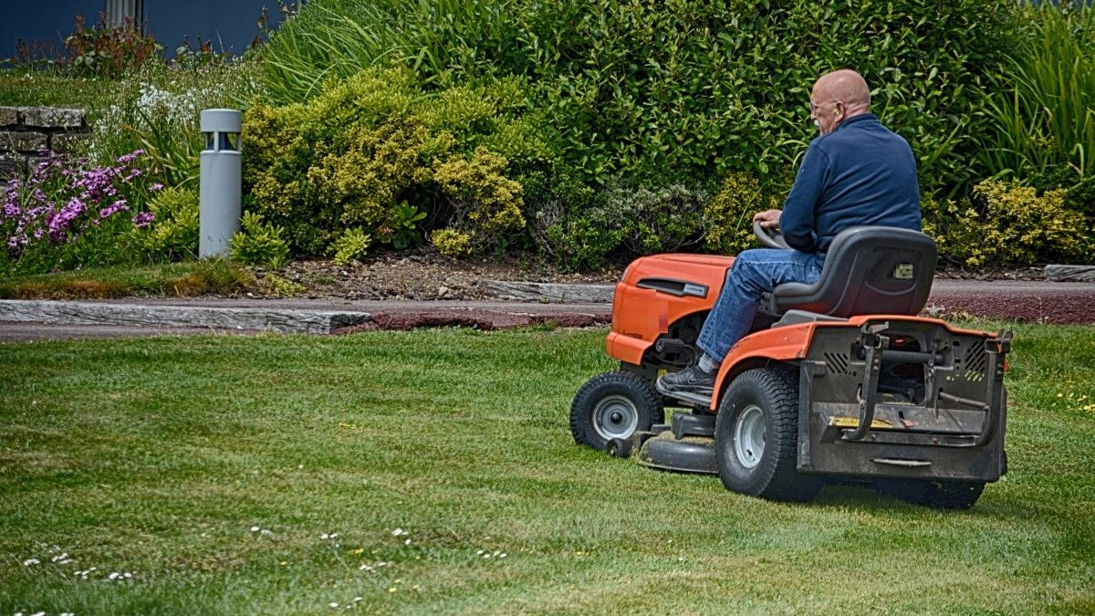 How To Make Your Green Grass Greener