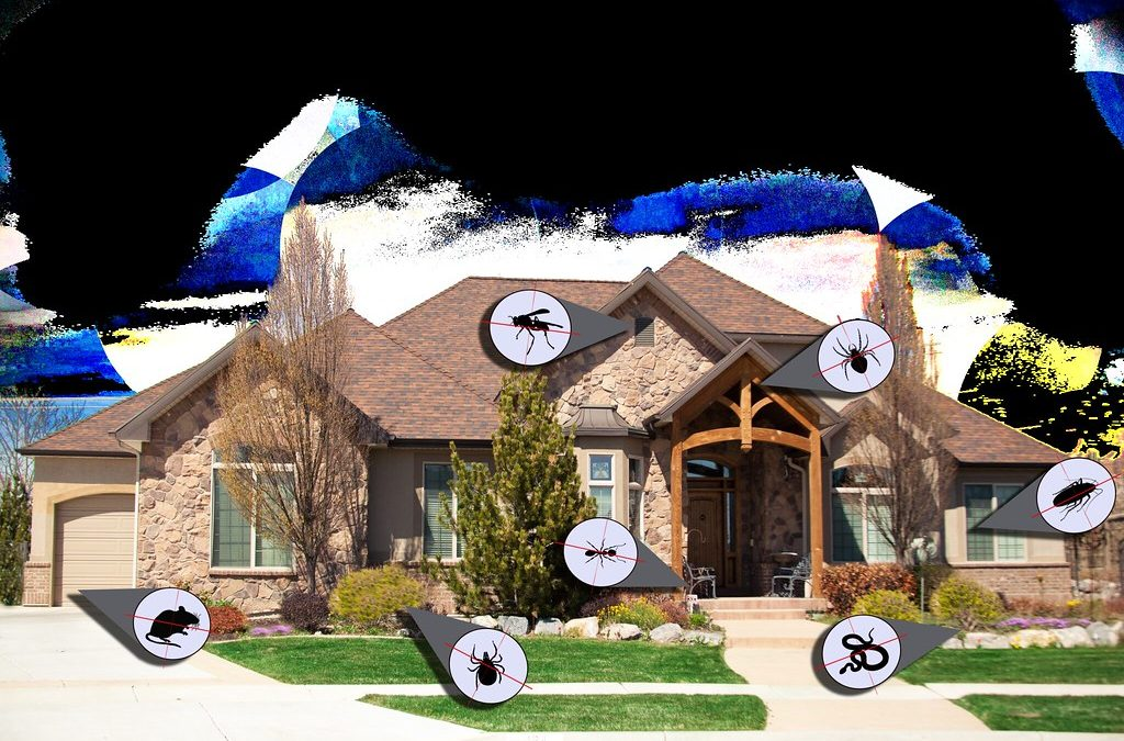 Importance of Hiring Pest Control Services